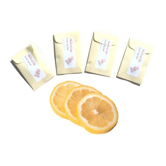 Sachets Fresh Lemon Homemade in USA Favors Seed Packet Baby Bridal Shower Prize Yellow or Select Color Decor Small Spring Gift Aromatherapy