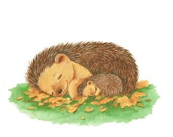 Sleeping Hedgehogs, Mummy and Baby, Art Print, Newborn Art, Unisex Nursery Art, Animal Print, Watercolor Print, Baby Gift, Nature Art