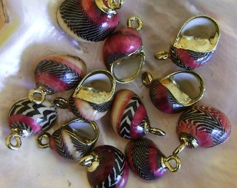 Nerita Sea Shell Jewelry Components Gold-Plated 12 pcs.