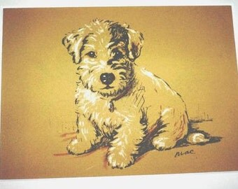 Sealyham terrier Signed mounted 1936 Lucy Dawson Albert terrier dog plateprint Unique gift