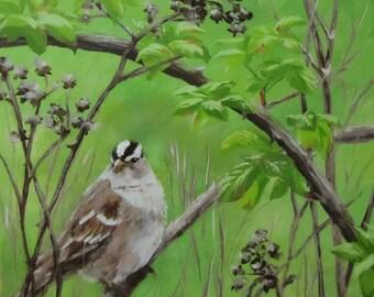 New Friend - Small original bird painting