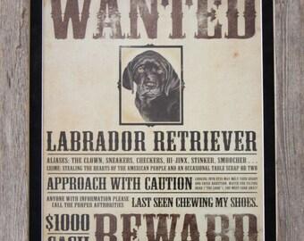 Vintage Magnet Board for Labrador Lovers