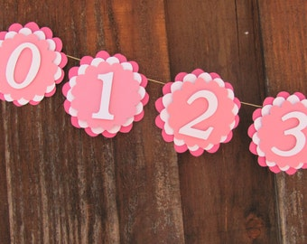 Custom made first year banner, 12 month banner, photo banner, first 12 month banner, first birthday, birthday decorations