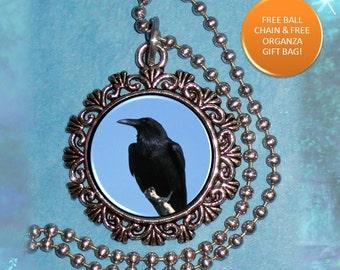 Raven Crow Photo Pendant, Black Bird Resin Pendant, Raven Crow Necklace Charm, Photo Pendant
