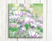 "Purple and white flowers printed on canvas and ready to hang, 12""x12"""
