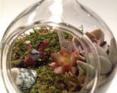 Hand Blown Glass Succulent Terrarium Riding the Range