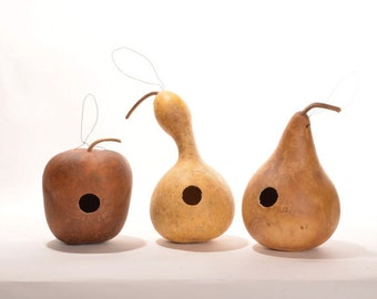 Birdhouse gourds, drilled for birdhouses, natural gourds, bottle gourd, apple gourd