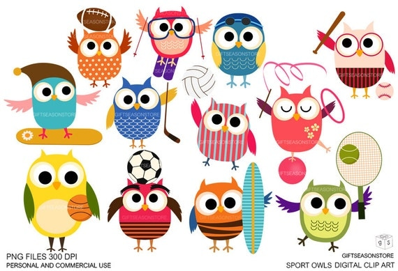 Image result for sport owl