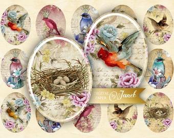 Vintage Birds - oval image - 30 x 40 mm or 18 x 25 mm - digital collage sheet  - Printable Download