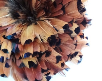Ringneck Pheasant gold sides plumage feathers wholesale craft design bulk lot costume