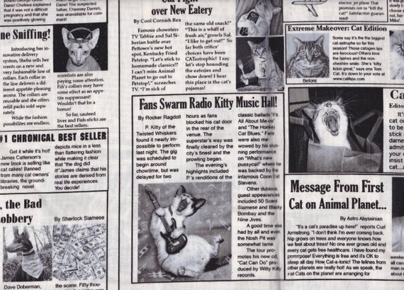 Fabric Newspaper Cats on Black White Read Cute Stories Articles on the Fabric Out of Print FQ