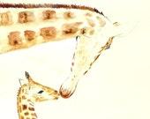 Giraffes original watercolor painting Animal illustration