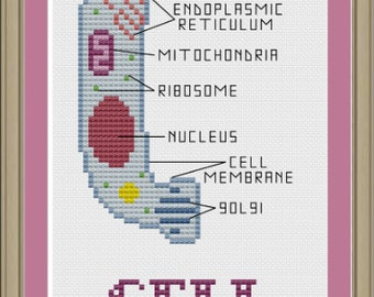 Cell phone: funny biology cross-stitch pattern