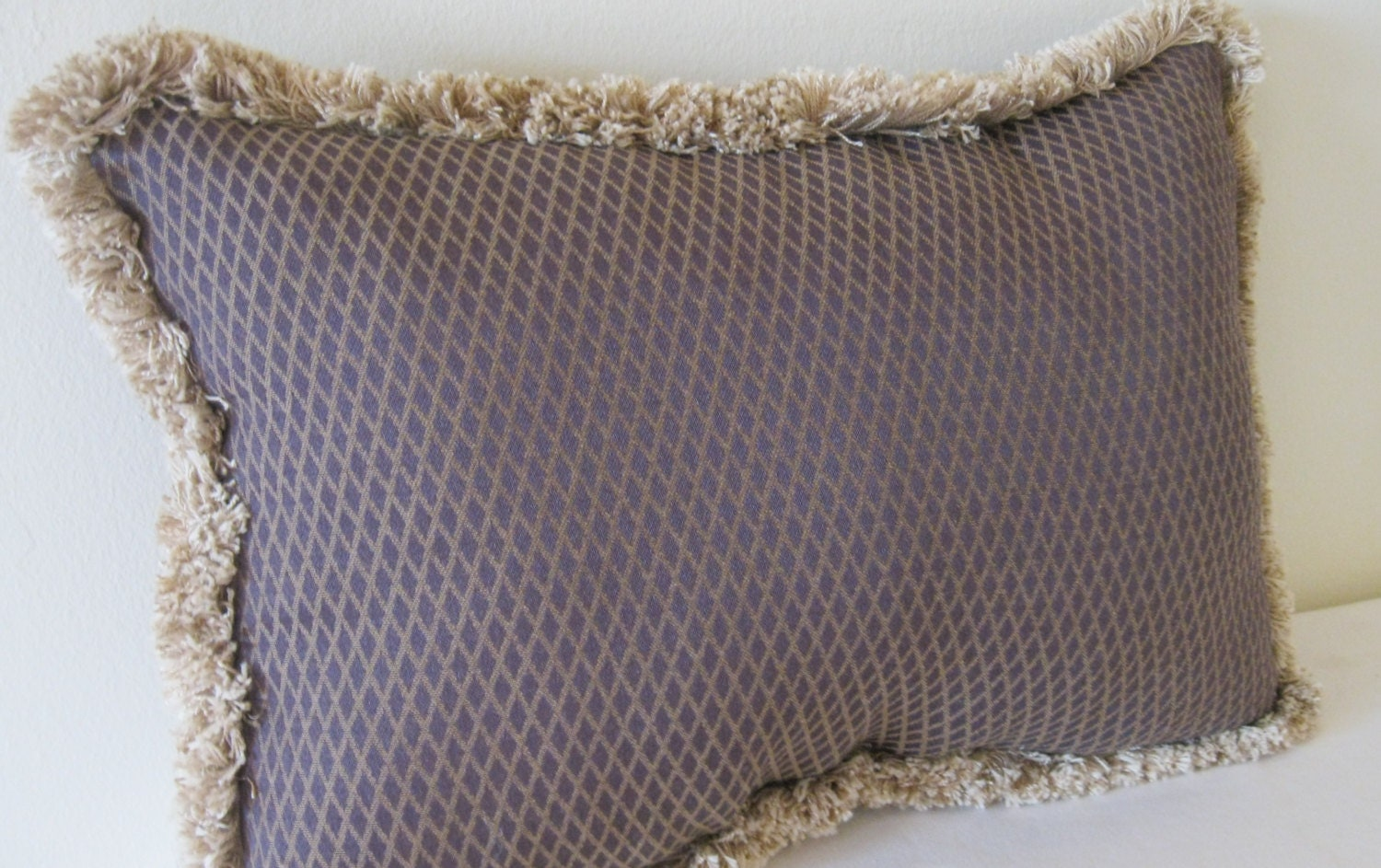 Throw Pillow Trim : Decorative throw pillow with brush trim size 20 x 14