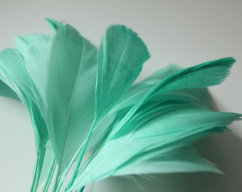 """Spearmint Stripped Goose Nagoire Feathers 4""""-6"""", 10 feathers"""