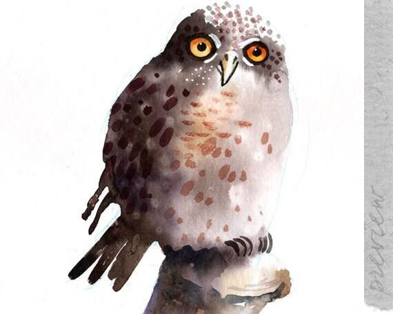 An Owl, to be exact an Eurasian Pygmy Owl, original painting by ozozo