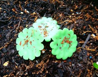 Fresh LIME Willowbark Soy Tarts
