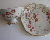 Vintage Mitterteich Bavaria cup and saucer features delicate floral design and scrolled gilt edges.