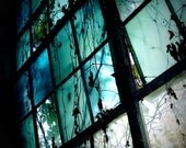 Dreamy Blue Window with Vines - I Dream in Azure - Cool colors, Fine Art, Home Decor, Film Photography
