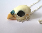 Budgie Skull Necklace