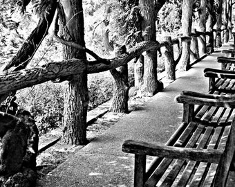 "Photograph ""Japanese Garden Path""- 8x10, Print Only"