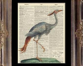 Vintage Dictionary Art Print - Stork Bird - Dictionary Page - Book Art Print No. P21