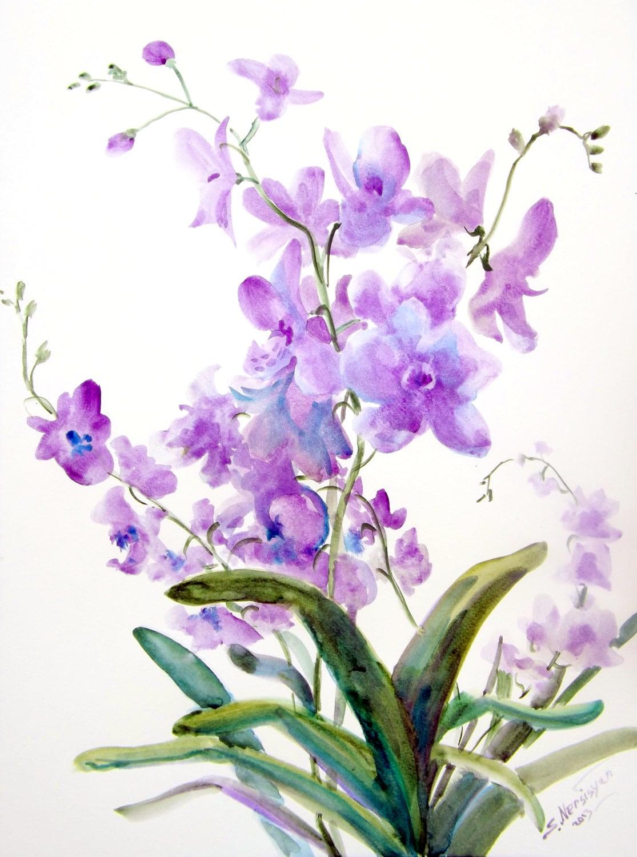 Original Large Watercolor Painting Orchids 18 X 24 Original