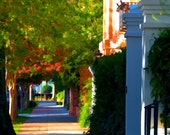 Spring Sidewalk in Charleston, South Carolina Street (16 x 20 canvas)