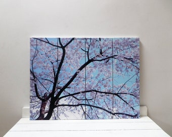 4 set canvas size 60 x 80 cm (overall size) of japanese cherry blossom taken in Tokyo. Photograph from www.fjpicture.com collection