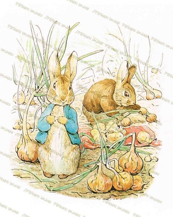 Peter Rabbit Nursery Decor Beatrix on Tale Peter Rabbit Free Printables