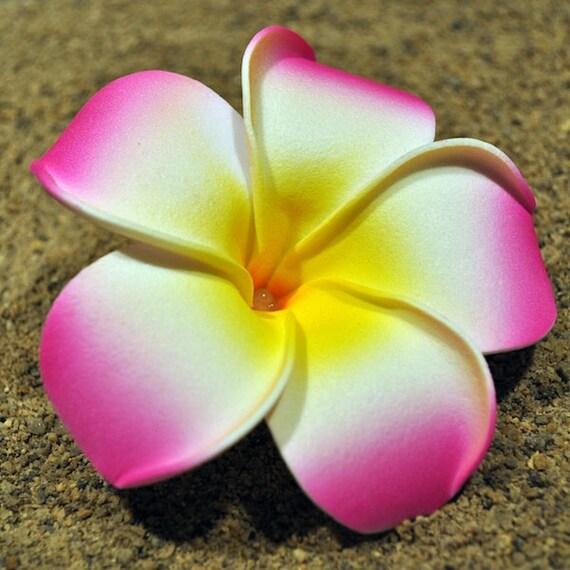 3 5 Black Flower Hair Clip With Flower Center: Hawaiian Foam Plumeria Flower Hair Clip 9cm 3.54 Inches