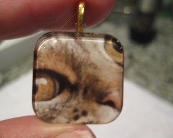 Meow - Help Me - glass pendant and chain