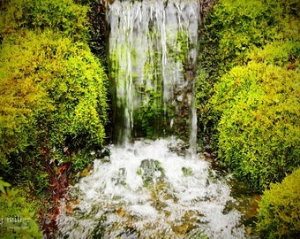 "Fine Art Photo - Title: ""Pure"" - billi j miller photography - Waterfall, green, lush, relaxation, purity"