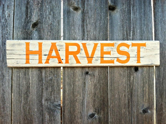 Order Fall / Autumn HARVEST Distressed Wall Decor - Rustic Wooden Sign ...