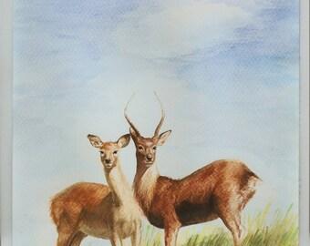 "SALE 60 % OFF - Original - Together - watercolor painting, 8"" X 16"" , Deer, Doe, Nature"