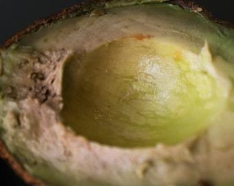 """Avocado Photo- 5"""" Square Close-up Macro Photograph of Avocado Inside"""