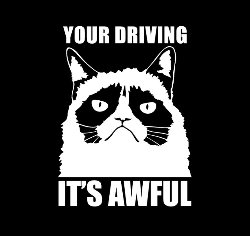 Grumpy Cat Your Driving It's Awful decal