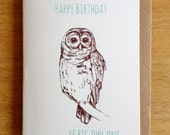 Happy Birthday Ye Big Owl One - Funny hand-designed and hand screen-printed card. Irish sayings.