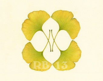 Ginkgo Leaf Mirrored, 12x12 in. Limited Edition Giclee Print (8/50)