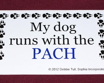 Dog Agility Bumper Sticker AKC PACH Title