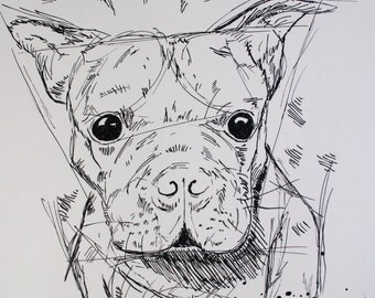Rufus the Boston Terrier, ink