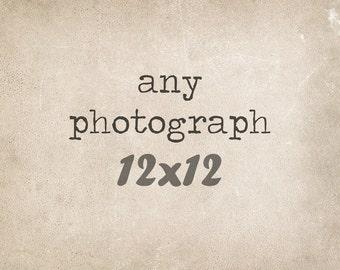 Fine Art Photography, 12x12 Custom Print, Fine Art Print