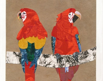 Collaged Scarlet Macaw