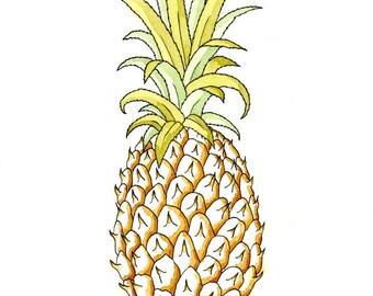 Pineapple, giclee print