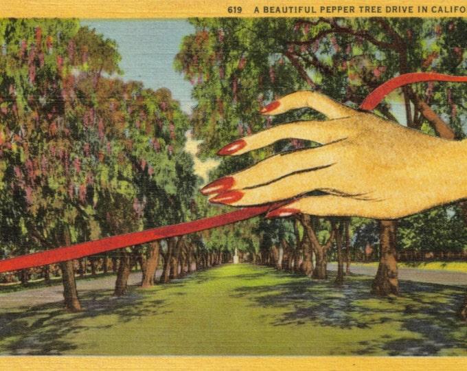Unique Art, Vintage California Postcard, One of a Kind Artwork