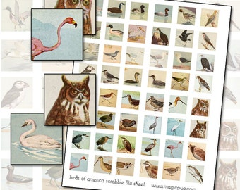 "Antique Bird Digital Collage Sheet inchies 25mm 1x1 1"" inch square"
