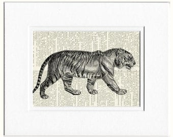 tiger dictionary page print