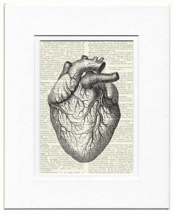 XOXO heart print