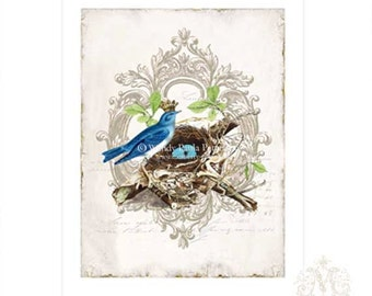 Bird print, vintage bird, illustration, crowned bird, birds nest, woodland, forest, nature, vintage decor, home decor, blue eggs