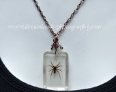 RESERVED For LUZ Real Spider Necklace jewelry brown Creature arachnid creepy resin Halloween costume pendant goth